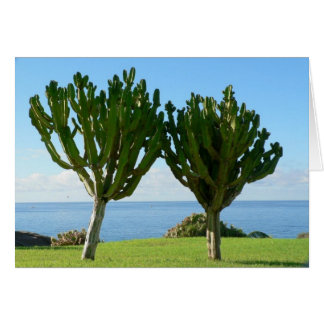 Pares de cactus tarjeta de felicitación