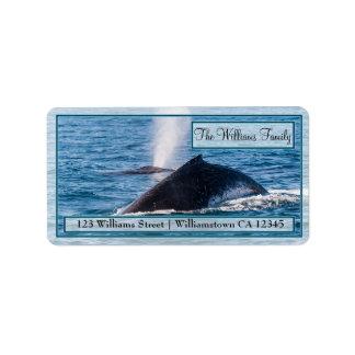 Pares de etiquetas de dirección de las ballenas