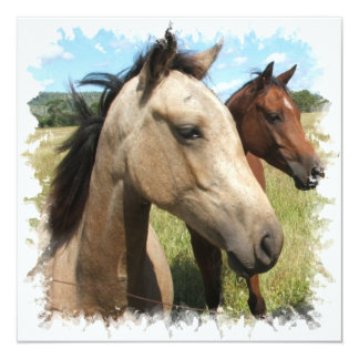 Pares de invitación de los caballos