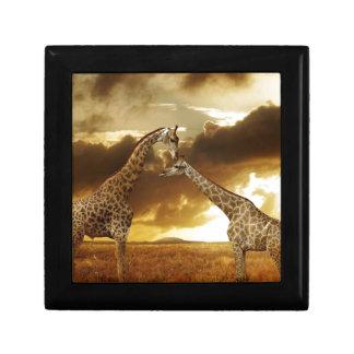 Pares de jirafas caja de regalo