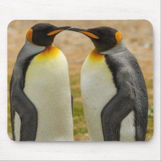 Pares de rey pingüinos, Malvinas Alfombrilla De Ratón