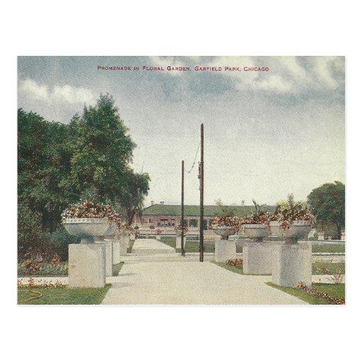 Parque Chicago Illinois de Garfield del vintage Tarjetas Postales