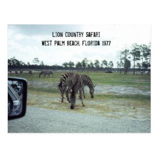 Parque de atracciones del safari de la Florida de Tarjeta Postal