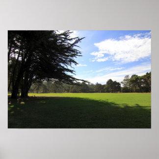 Parque de Cypress Póster