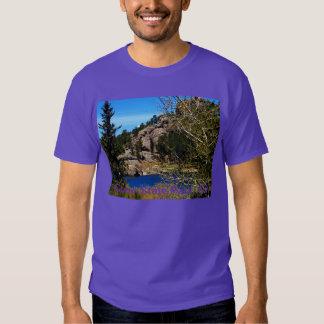Parque de estado de Custer de la camiseta SD