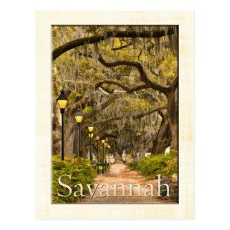 Parque de Forsyth del vintage - sabana, GA Postal