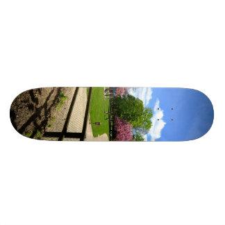 Parque del Prunus en la película de Velvia Monopatines