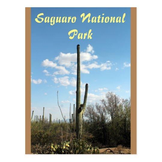 Parque nacional de Saguaro, postal de Tuscon
