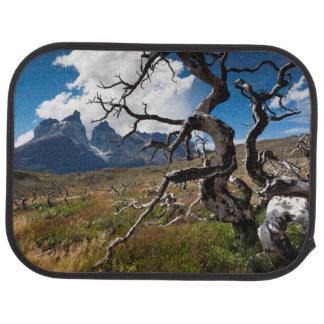 Parque nacional de Torres del Paine, árboles Alfombrilla De Coche