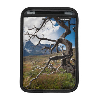 Parque nacional de Torres del Paine, árboles Funda iPad Mini