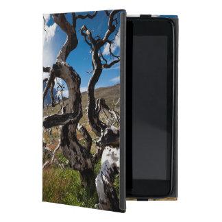 Parque nacional de Torres del Paine, árboles iPad Mini Protector