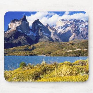 Parque nacional de Torres del Paine, Chile Tapetes De Ratones