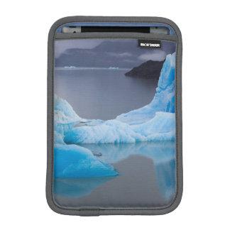 Parque nacional de Torres del Paine, hielo glacial Fundas iPad Mini