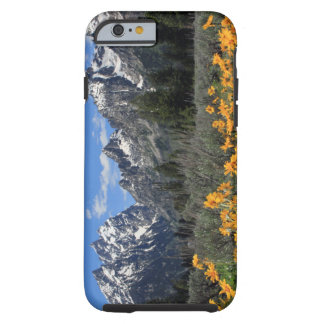 Parque nacional magnífico de Teton Funda De iPhone 6 Tough