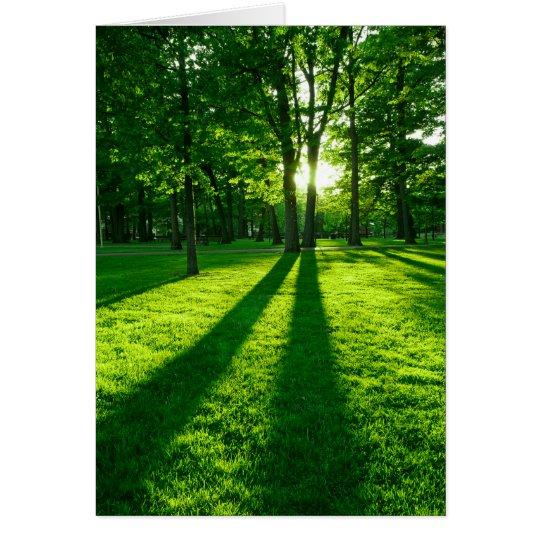 Parque verde tarjeta de felicitación
