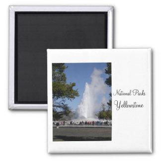 Parques nacionales - imán de Yellowstone
