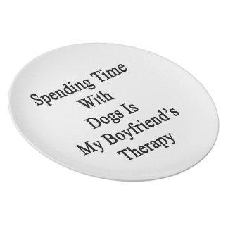 Pasar tiempo con los perros es la terapia de mi no plato