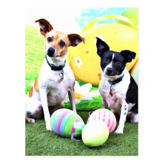 Pascua - fox terrier - Sadie y Baboo Postal