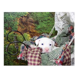 Paseo del carro del perrito del bebé postal