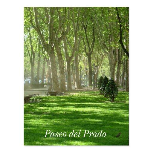 Paseo del Prado Tarjeta Postal