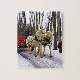 Paseo del trineo en la colección de la nieve puzzle
