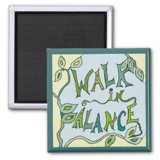 paseo en equilibrio vid imanes