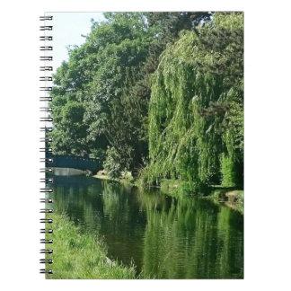 Paseo soleado verde del río de los árboles del cuaderno