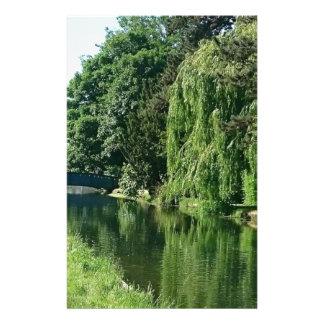 Paseo soleado verde del río de los árboles del papelería