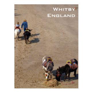Paseos del burro en la playa de Whitby, North Postal