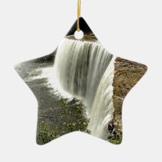 Paso del agua de la naturaleza ornaments para arbol de navidad