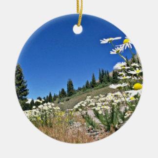 Paso del Boreas, flores de Breckenridge, los Adorno Redondo De Cerámica
