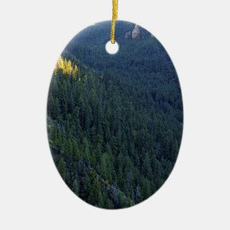 Paso del bosque de la montaña adorno