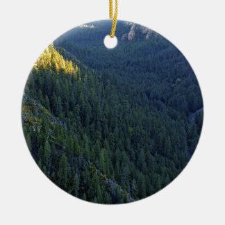 Paso del bosque de la montaña ornato