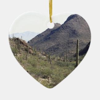 Paso del desierto del Saguaro Ornatos