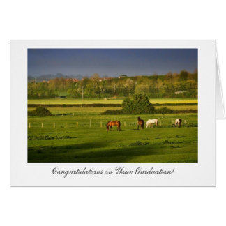 Pastando los caballos - enhorabuena en la tarjeta de felicitación