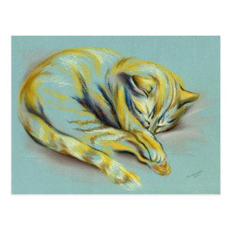 Pastel del gato - gatito del Tabby el dormir Postal