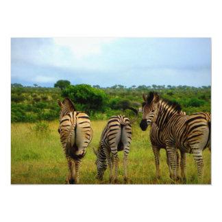 Pasto de cebras africanas invitación
