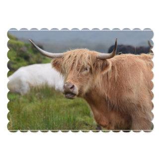 Pasto de la vaca de la montaña invitaciones personalizada
