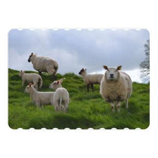 Pasto de ovejas invitación 12,7 x 17,8 cm