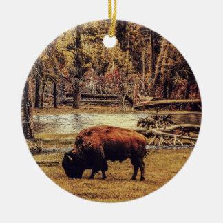 Pasto del ornamento del búfalo