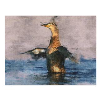 Pato alegre del pato silvestre postal