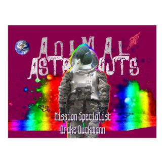 Pato animal de los astronautas postal