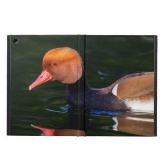 Pato de mar de cresta roja masculino, rufina del funda para iPad air