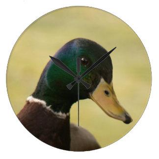 Pato del pato silvestre reloj redondo grande