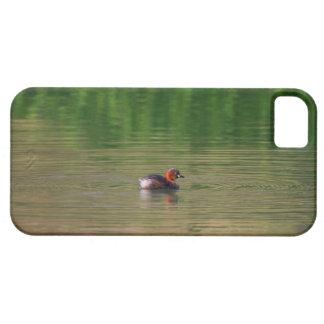 Pato del pequeño grebe en plumaje de la cría funda para iPhone SE/5/5s