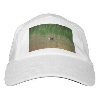 Pato del pequeño grebe en plumaje de la cría gorra de alto rendimiento