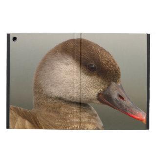 Pato femenino del pato de mar, rufina del netta funda para iPad air