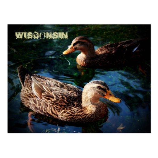 Patos de Wisconsin Postal