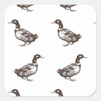 Patos del corral de la colección de Emma Janeway Pegatina Cuadrada