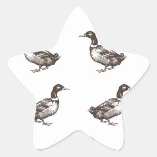 Patos del corral de la colección de Emma Janeway Pegatina En Forma De Estrella